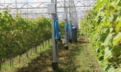 Thiết bị lọc mặn làm tăng năng suất cây trồng